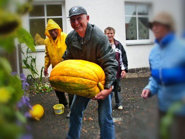 Oktober 2010 - Günter Pfarr wuchtet beim Schmücken einen Kürbis an seinen Platz
